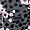 Cheetah Floral